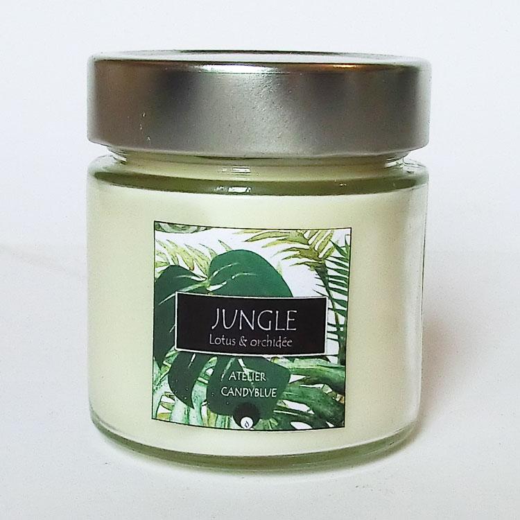 Jungle2web