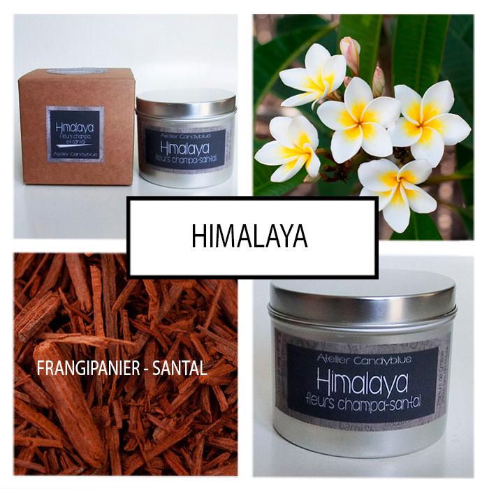 Presentation himalaya web