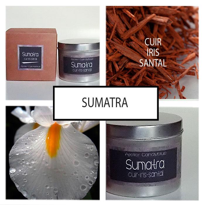 Presentation sumatraweb