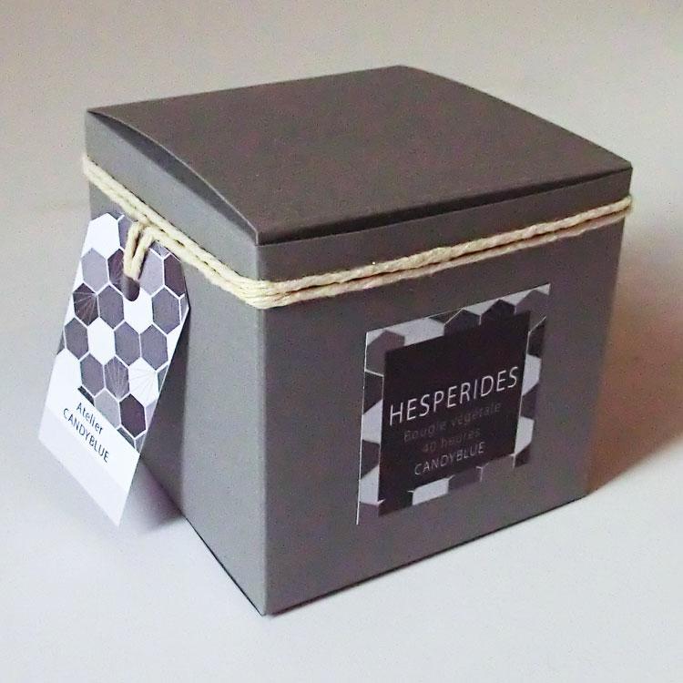Hesperide2web