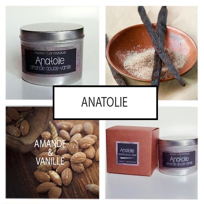 Presentation anatolie web