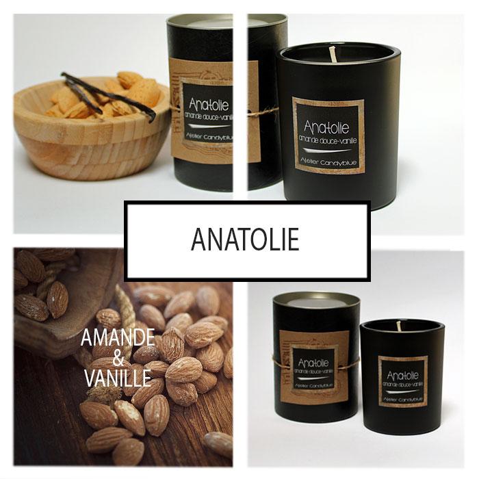 Presentation anatolie2w