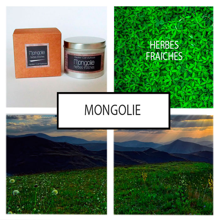 Presentation mongoliew