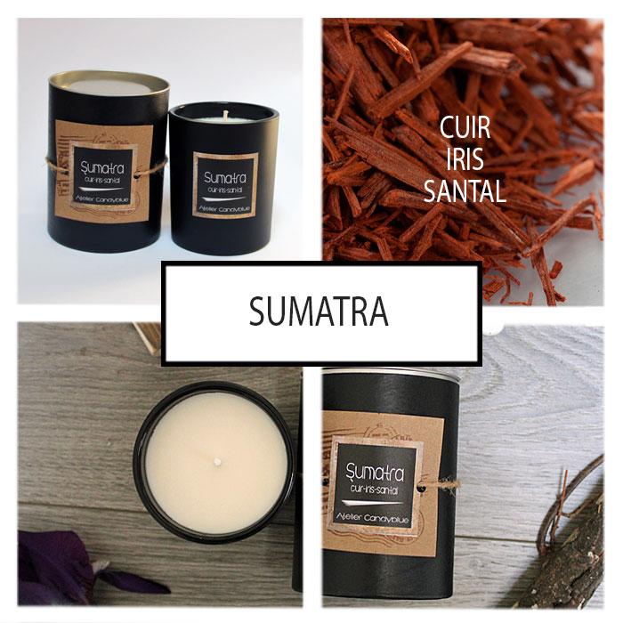Presentation sumatra2w